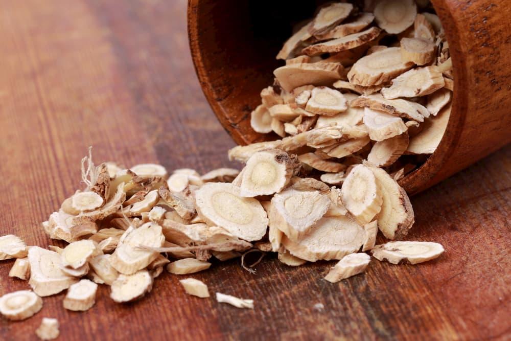 Astragalus : Bon de réduction - Origine - Danger | Quels sont les effets secondaires ?
